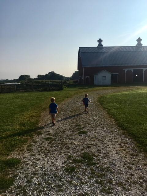 2 boys walking towards a barn