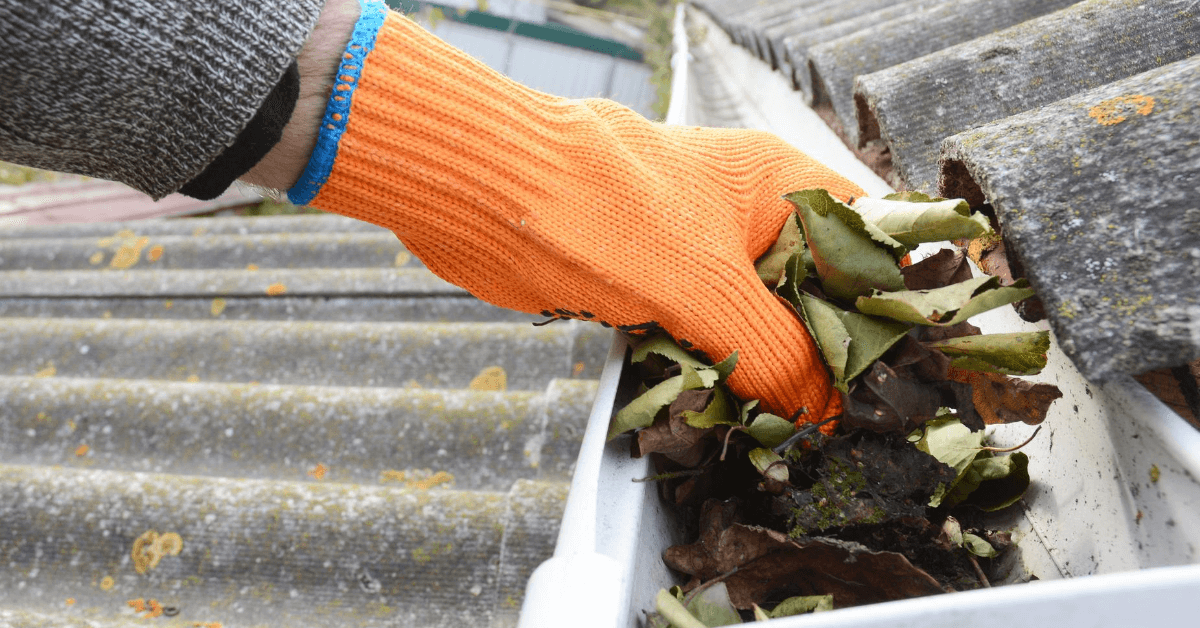 gloved hand cleaning out gutter