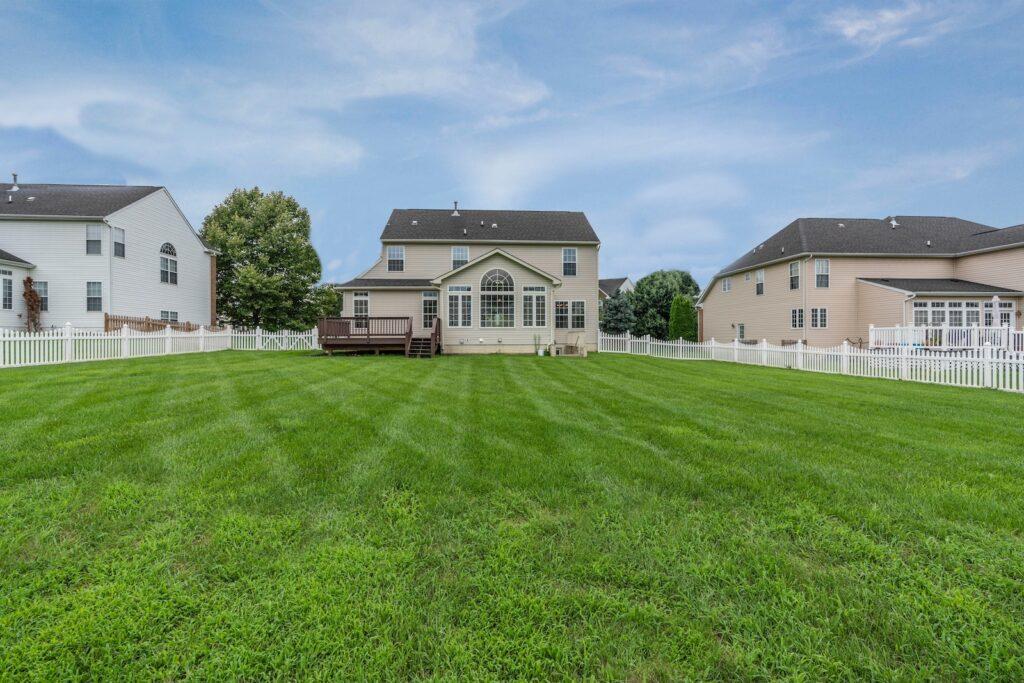 suburban backyard